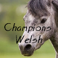 champions welsh