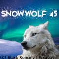 snowwolf 45