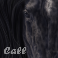 calljs