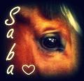 saba..♥