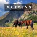 aurorya