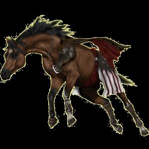 Reitpferd Paint Horse Rappe mit Overo-Scheckung