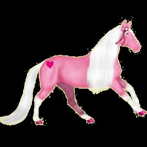 Reitpferd Mustang Wenige schwarze Flecken