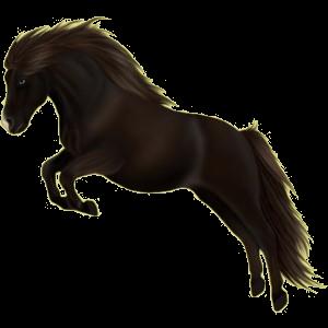 Pegasus-Pony Deutsches Reitpony Fuchs