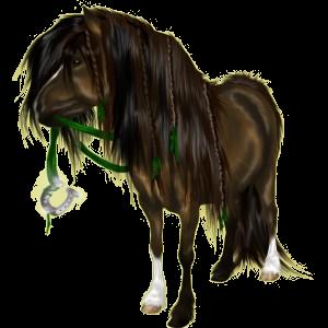 Pegasus-Pony Welsh Cob Mausgrau
