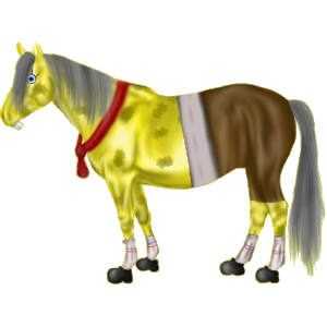 Reitpferd Paso Peruano Dunkelbrauner