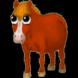Pony Deutsches Reitpony Hellgrau