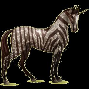 Einhorn-Reitpferd Marwari Dunkelfuchs