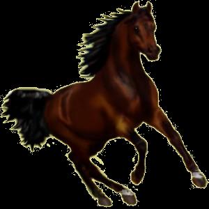 Pegasus Araber Brauner