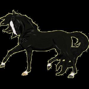 Pegasus-Reitpferd Marwari Rotbrauner