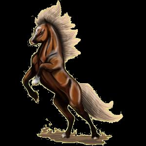 Pony Neufundland Pony Strawberry Roan
