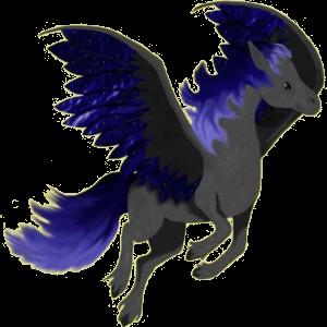 Pegasus-Reitpferd Brumby Rappe