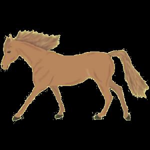 Pegasus-Pony Haflinger Fuchs mit heller Mähne