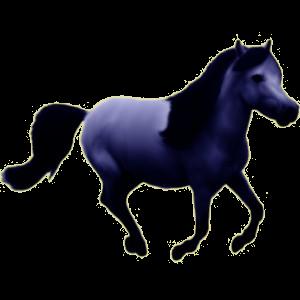 Pegasus-Reitpferd Araber Rappe