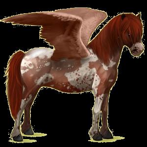Pegasus-Pony Neufundland Pony Brauner