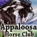 from appaloosa horse club