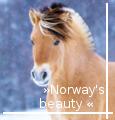 » norway's beauty «