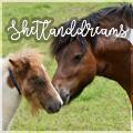 shetlanddreams