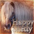 happy shetty