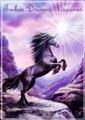 tinker dreams unicorns