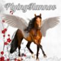 flyinghannos