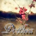 dothea