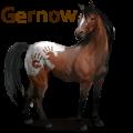 gernow