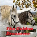 the golden dreamers