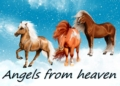angels from  heaven