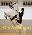 } oro austriaco {