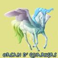 orcan d' quarters ♞
