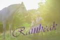 rainbeak
