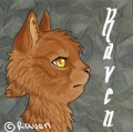 ravenguardian