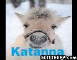 katanna