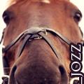 _jozz