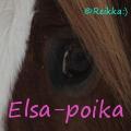 elsa-poika