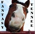 fantasy tennee