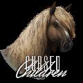 ϟ cursed children