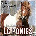 ¤ little cute ponies ¤