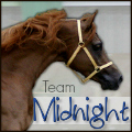 team midnight