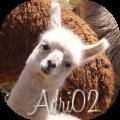 adri02