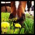 petra97