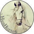 ~hunhorse6