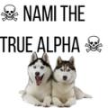 ☠  nami the true alpha  ☠