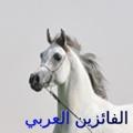 الفائزين العربي