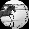 U.S.S. ARIZONA
