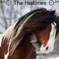 °º۞ the histories ۞º°