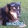 tata2000