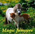 ♞ magic jumpers ♞
