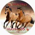 ♛ mischief managed ♚